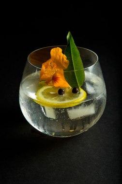 Den spansk gin-tonic