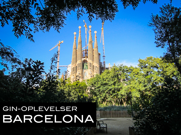 Gin-oplevelser i Barcelona