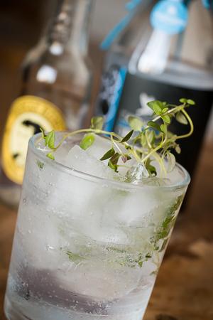 Tarquin's Gin & Tonic med Thomas Henry Tonic og timian. Foto: Michael Sperling.