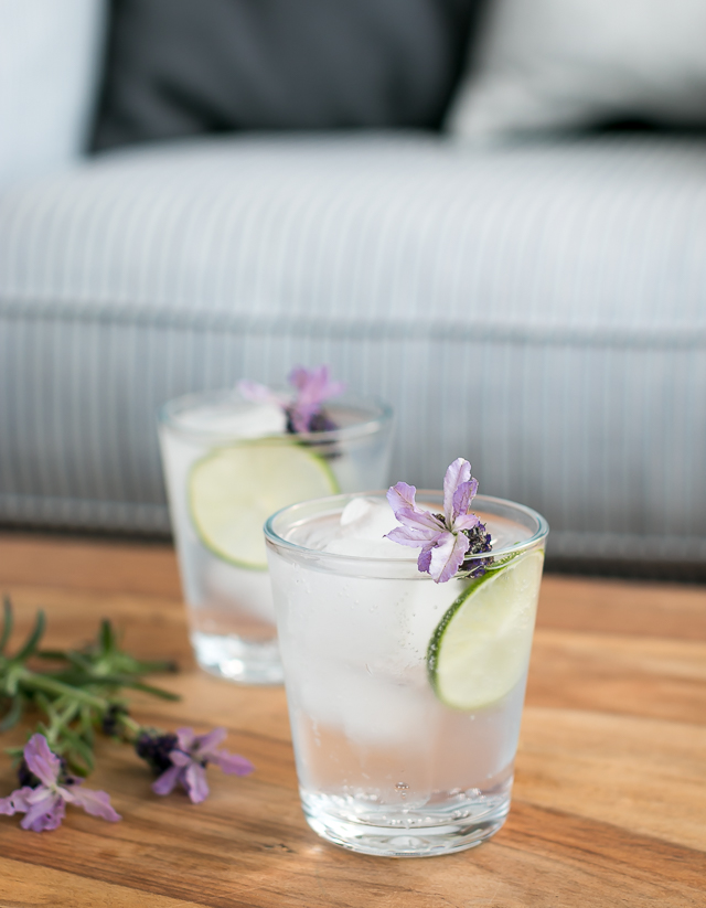 Gin and Tonic med Ferdinand's Saar Dry Gin og Gents Swiss Roots Tonic Water. Photo by Michael Sperling.