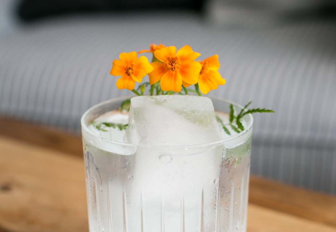 Gintonic med Thomas Henry Elderflower Tonic og Nginious Gin. Photo by Michael Sperling, En Verden af Gin.