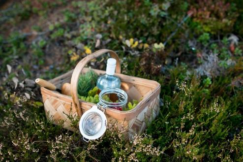 En kurv spækket med friske ingredienser til Hernö Gin Cocktail Awards 2016. Photo by Michael Sperling.