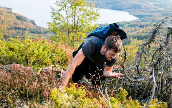 Robert James Smith fra Ljunggrens samler bær på Skulebergets klipper. Photo by Michael Sperling.