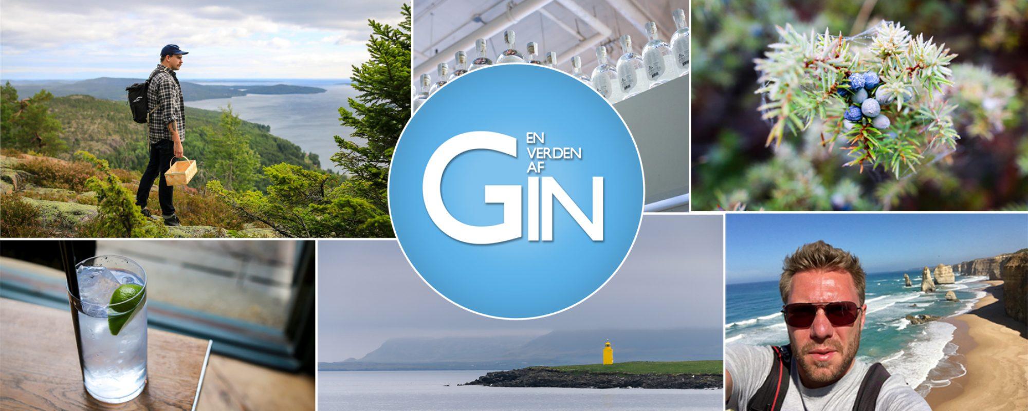 En Verden af Gin