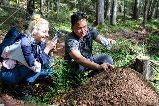 Deltagerne Lina Navickaite og Koco Widyantno på rov i en myretue. Photo by Michael Sperling.