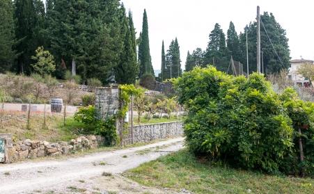 Den frodige have med urter og andre botanicals hos Peter in Florence Distillery. Michael Sperling.
