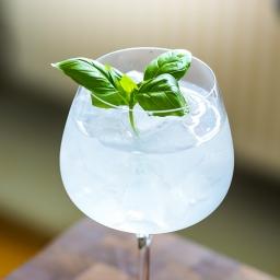 Den sommerlige Winter Gin & Tonic