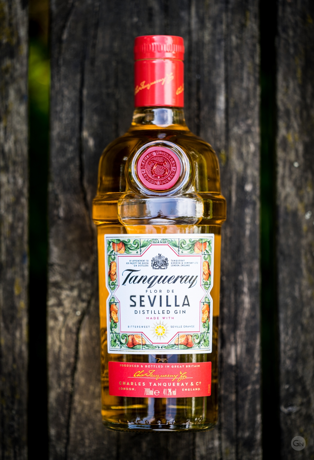 Tanqueray Flor de Sevilla negroni. Photo by Michael Sperling.